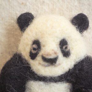 子パンダ正面からこんにちは