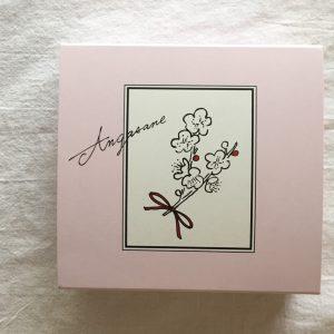 「あんがさね」4個入りはこちらのピンクのお箱に