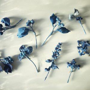 本物の形を写し取った青い標本。藍の色は凛とした表情の植物たち。